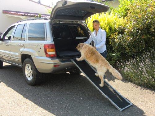 DoggyStep Hunderampe – wahrscheinlich weltweit leichteste – nur ca. 4,9 kg – klappbar – Länge: 162 cm Breite: 39 cm – belastbar bis max 85 kg – Farbe: silber - 3