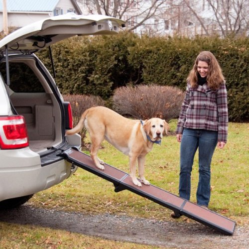 Travel Lite Hunderampe – bis 90 kg belastbar - 3