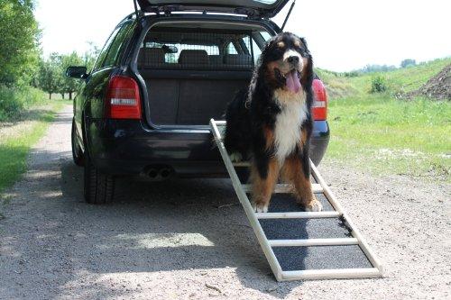 4pets Easy-Steps Einstiegshilfe - 4